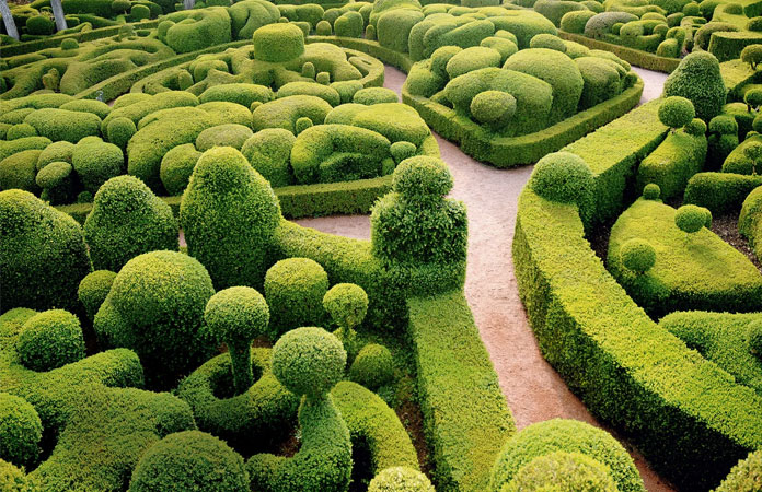 Topiary Philosophy